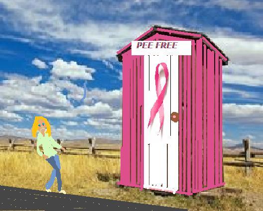 Outhouse susan komen1