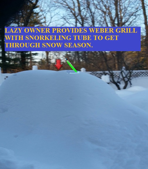 Snowburied grill1